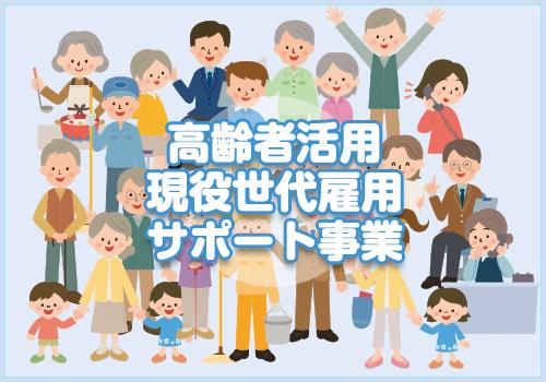 高齢者活用・現役世代雇用サポート事業