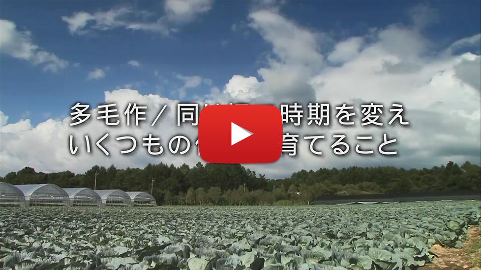 テレビCM「多毛作」篇